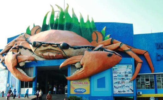 Wisata Bahari Lamongan Wbl Lamongan Tourism Website